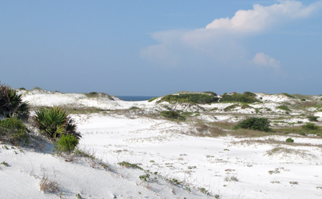 A view of the dunes at Deer Lake State Park. Lori Ceier/WaltonOutdoors.com