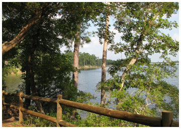 A view of Rocky Bayou from picnic area.