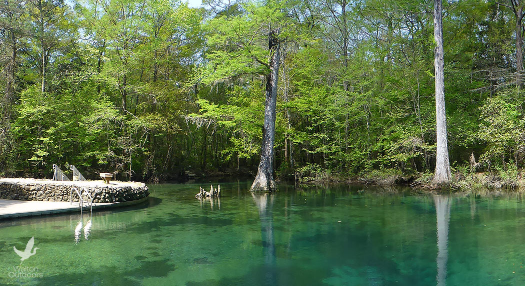 Cool Off On A Hot Day At Ponce De Leon Springs State Park