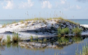 Mother Nature has sculpted beautiful sand dunes at Topsail Hill State Preserve. Lori Ceier/Walton Outdoors