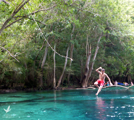 Take a dip into the cool water of at Cypress Springs. Lori Ceier/Walton Outdoors