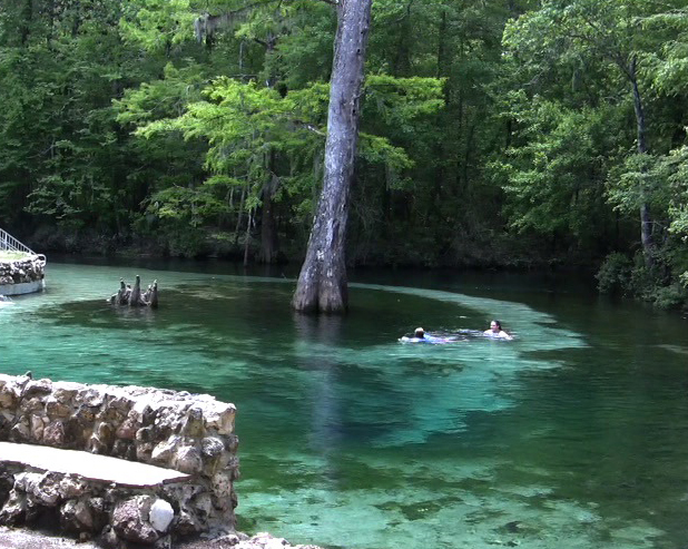 Cool off in the spring at Ponce De Leon Springs State Park. Lori Ceier/Walton Outdoors