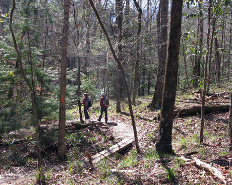 Two hikers head down the ravine at Torreya State Park. Lori Ceier/Walton Outdoors