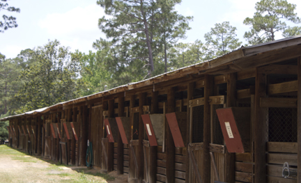 Equestrian stables at Coldwater Creek Recreation Area in Blackwater River State Forest. Lori Ceier/Walton Outdoors