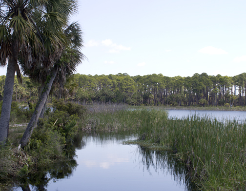 St. Vincent Island boast several fresh water lakes. Lori Ceier/Walton Outdoors