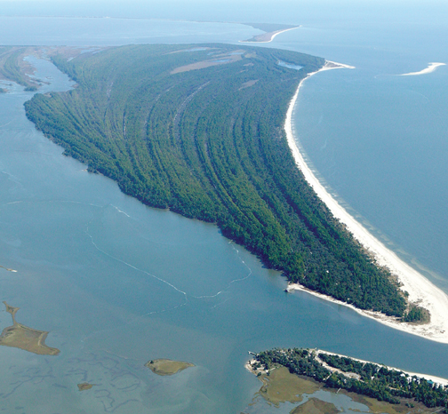 Aerial photo of St. Vincent Island NWR shows the natural sand ridges. Photo courtesy Debbie Hooper http://www.joebay.com.