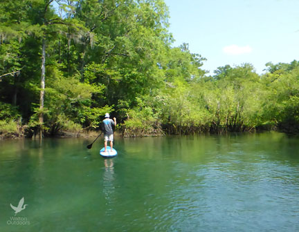 Explore the spring run on a YOLO board with Backwater tours. Lori Ceier/Walton Outdoors