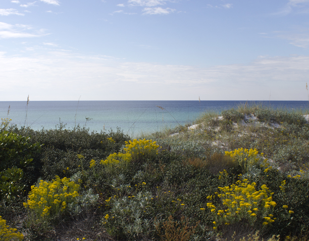 A view of the Gulf of Mexico at Deer Lake State Park. Lori Ceier/Walton Outdoors