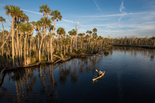 Joe Guthrie paddles a kayak down one of the many creeks of the Chassahowitzka National Wildlife Refuge, a key protected area along the Nature Coast of Florida. Photo by Carlton Ward Photography/Carlton Ward, Jr.