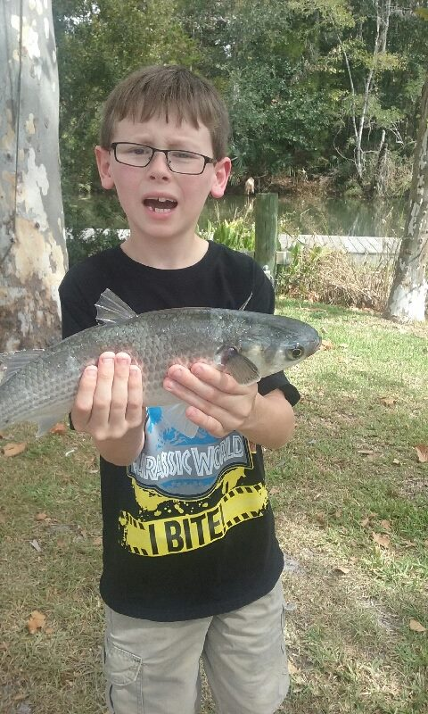 Aiden Wolfe of Freeport reeled in a mullet with his new FISH FLORIDA fishing rod. Photo courtesy Kelly Roe