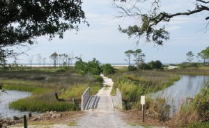 A trail to the beach at Camp Helen. Lori Ceier/Walton Outdoors