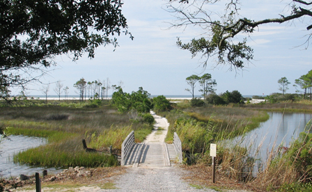 A trail to the beach at Camp Helen State Park. Lori Ceier/Walton Outdoors