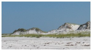 Topsail Hill dunes on the beach. Lori Ceier/Walton Outdoors