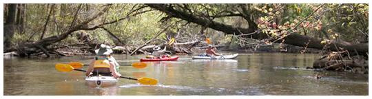 Photo courtesy West Florida Canoe and Kayak Club.