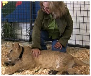 Lori and lion cub.