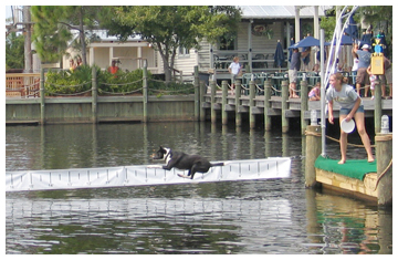 Airdog competion at Baytowne Wharf. Lori Ceier/Walton Outdoors