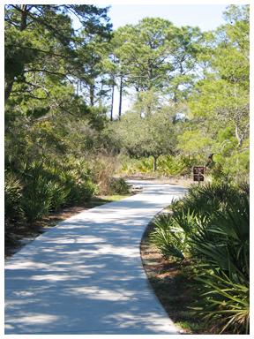 Path at Deer Lake. Lori Ceier/WaltonOutdoors.com