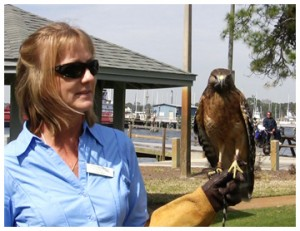 Lisa Miller and Phoenix, a red shouldered hawk.