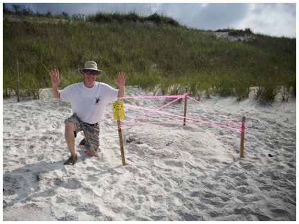 Nest #10 was found by Charlie Lofton at Sunrise Beach June 17.