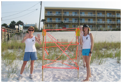Nest No. 15 was found by Bev, on left June 22, a loggerhead, moved because it was in the tide line and the bottom of the nest was already in water.  This nest was west of the open area west of Pompano Joe's
