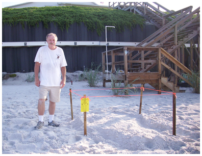 Nest #27 is a loggerhead, left in place at Sand Cliffs subdivision in Sea Crest found by Al on July 14.