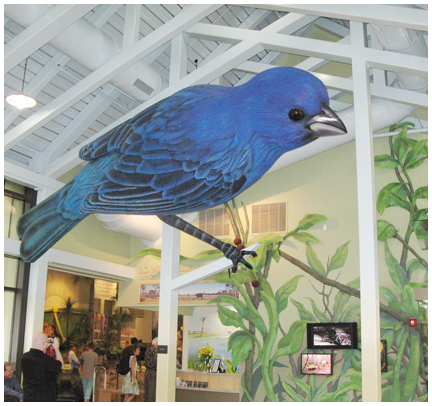 An 18 ft. long indigo bunting greets visitors at the E.O. Wilson Biophilia Center.