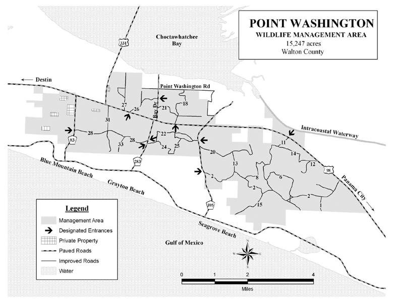 Microsoft Word - POINT_WASHINGTON_200910_11by17_draft.doc