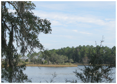 View of Tucker Bayou from new deck.