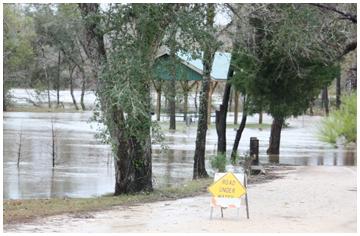 Flood waters in Bruce.