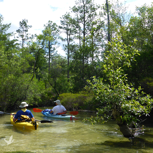 Getting an Eglin pass for paddling places such as Turkey creek available online. Lori Ceier/WaltonOutdoors.com