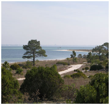 A view of the Gulf from one of the trails at St. Andrews State Park. Lori Ceier/Walton Outdoors