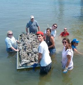 oysterbuilders