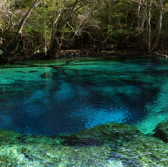 Cypress spring on Holmes Creek. Lori Ceier/Walton Outdoors