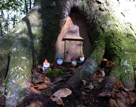 "Gnomes ""protect"" a geocache inside of a tree along the Florida Trail near Econfina Creek. Lori Ceier/Walton Outdoors"