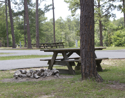 Typical campsite area. Some have electric/water. Lori Ceier/Walton Outdoors