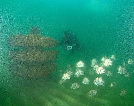 Photo courtesy Mexico Beach Artificial Reef Association.
