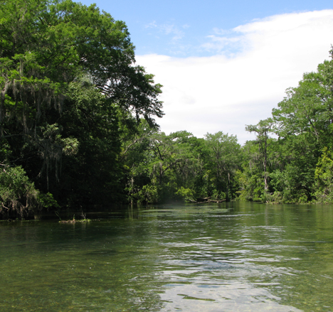 Enjoy the crystal clear water of Spring Creek. Lori Ceier/Walton Outdoors