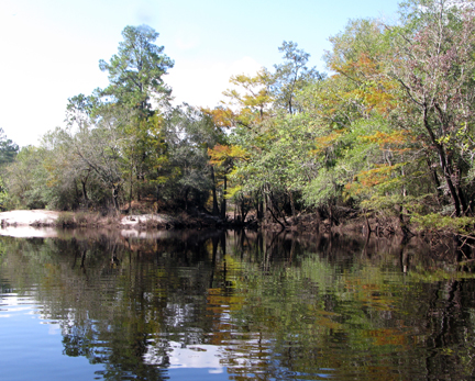 New River in Tate's Hell State Forest. Lori Ceier/Walton Outdoors