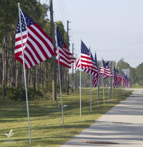 Patriotic flags fly along U.S. Hwy. 331. Lori Ceier/Walton Outdoors