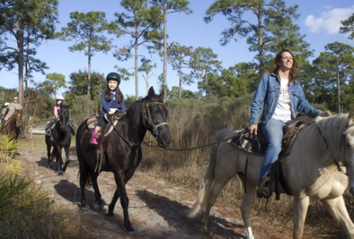 Horseback Riding In And Around Walton County Walton Outdoors