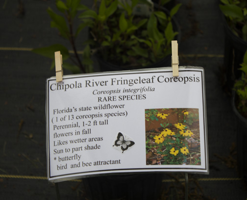 Instructions and information on what is attracted to plants is on hand. Lori Ceier/Walton Outdoors