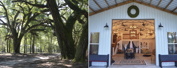 Green pasture, oak trees, and seating for up to 90 people indoors at Live Oak Plantation. Photo courtesy Live Oak Plantation