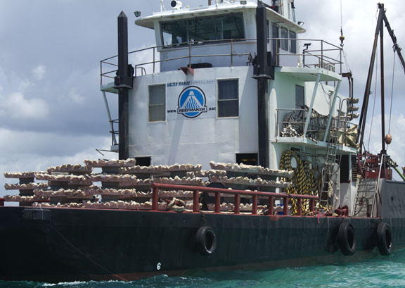 New reef structures ready to be deployed. Lori Ceier/Walton Outdoors