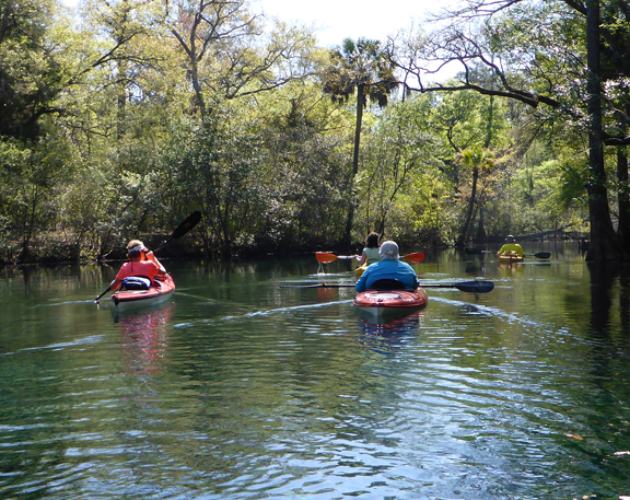 Econfina Creek is popular with paddlers. Lori Ceier/Walton Outdoors