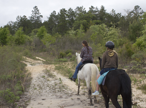 Several equestrian trails are available at Econfina Creek Water Management Area. Lori Ceier/Walton Outdoors