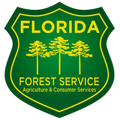 ffs_logo