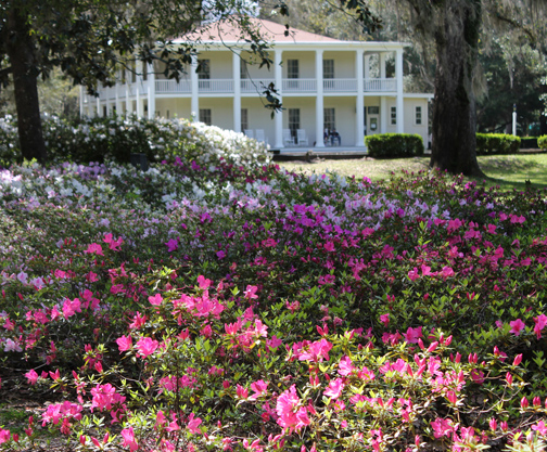 Camellias in the winter, azaleas in the spring, and roses in the summer at Eden Gardens State Park. Lori Ceier/Walton Outdoors