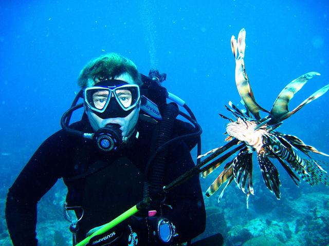 lionfishdiver