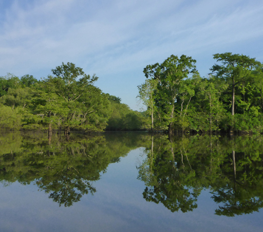 The Choctawhatchee River boasts many recreation opportunities. Lori Ceier/Walton Outdoors