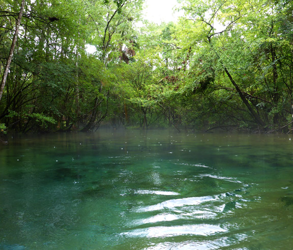 A hot summer day creates a mist over the cool water of Williford Spring. Lori Ceier/Walton Outdoors